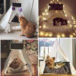 Dewel Maison et Tente pour le Chien Pet Home Amovible et Lavable Dentelle Blanc de la marque Dewel TOP 10 image 2 produit
