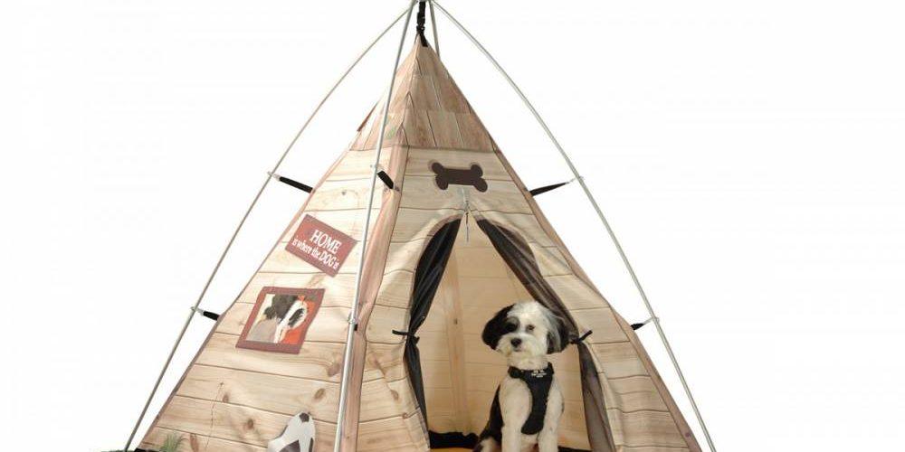 La tente pour chien et ses avantages principale