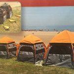 Tente parapluie de camping, imperméable en nylon, pour chien, 60 x 60 x 67 cm. de la marque Camon TOP 4 image 0 produit